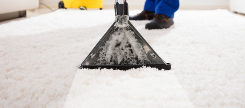 Carpet Cleaning – Should You Choose Professional or DIY?